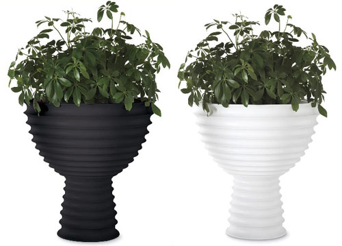 Modern Planters at Chiasso