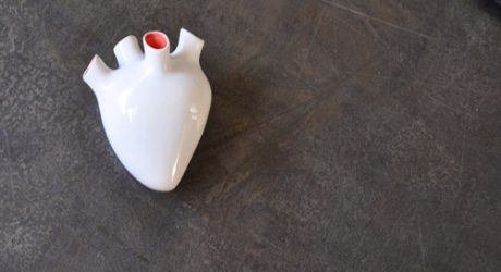 Corezone Heart-Shaped Secret Vessel