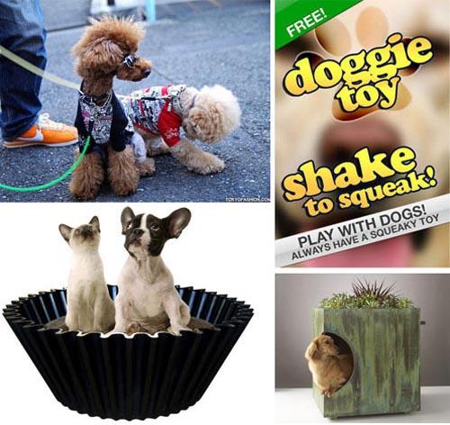 Dog Milk: Best of August 2010