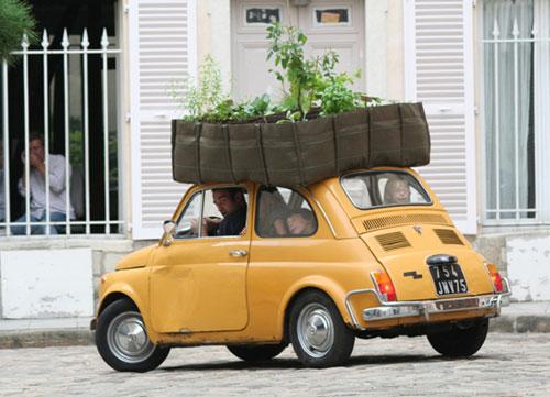 The Mobile Planter