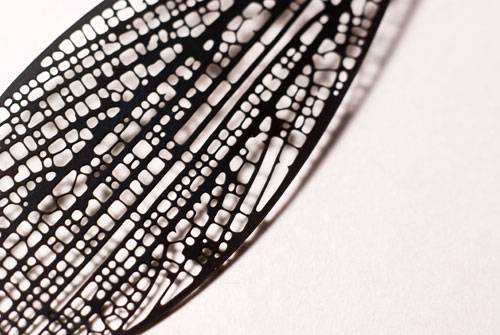 Black Chromium by Nervous System Jewelry