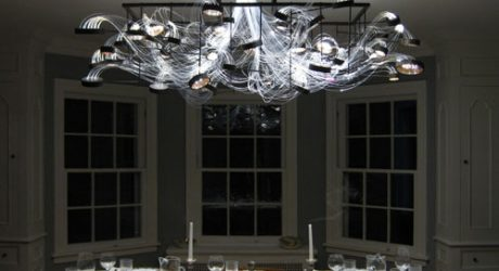 Bacterioptica Chandelier by MADLAB