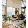 milkweed-modern-plants-gardens-2