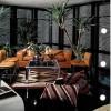 milkweed-modern-plants-gardens-7