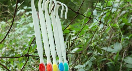 Goodjoy's Hooking Toothbrush