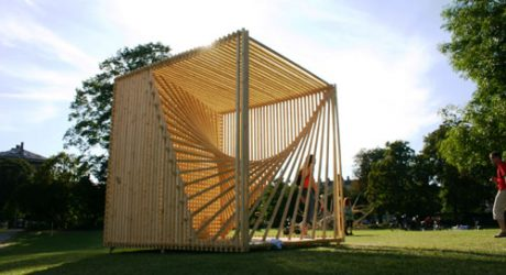 Organic Cube by Søren Korsgaard