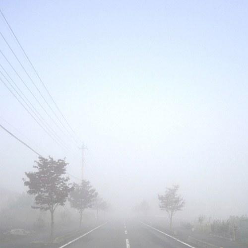 studiogreenblue_fog_house_2_500x500
