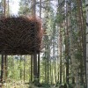tree-hotel-birds-nest-1