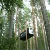 tree-hotel-cabin-2