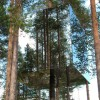 tree-hotel-mirror-cube-2