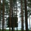 tree-hotel-mirror-cube-4