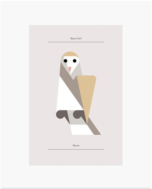 josh-brill-owls-3