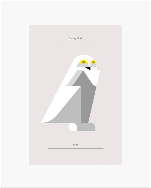 josh-brill-owls-4