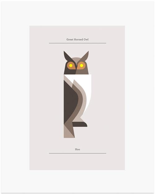 josh-brill-owls-5
