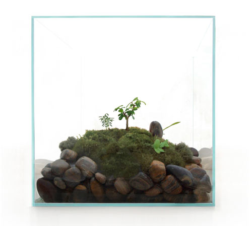 James Modern Terrariums in main home furnishings art  Category