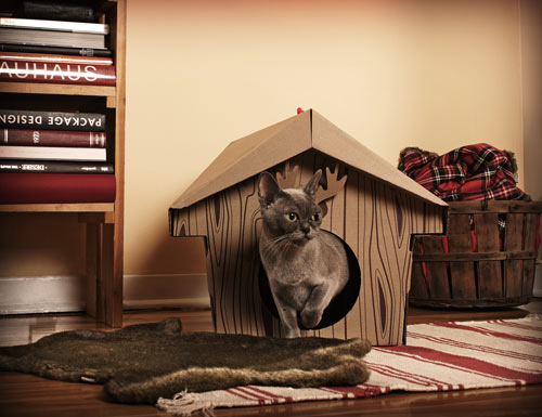 Loyal Luxe Cat Products in home furnishings  Category