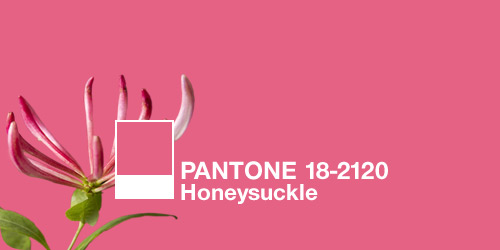 PANTONE's 2011 Color of the Year