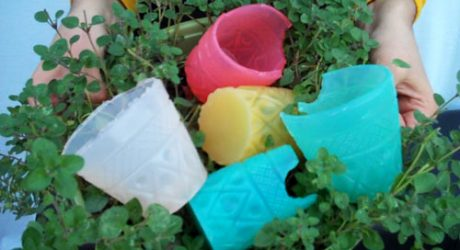 Jelloware Edible Cups