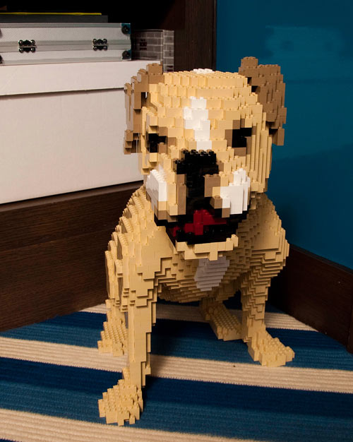 Spotted! LEGO Dog