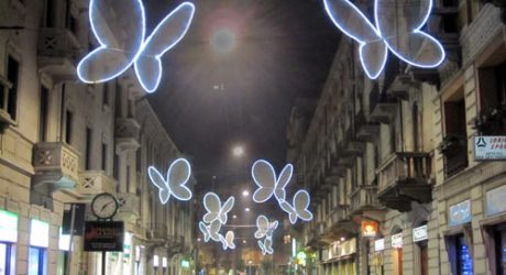 Light Butterflies by Chiara Lampugnani