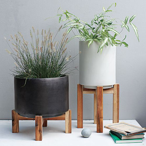Milkweed Planter Passion Design Milk