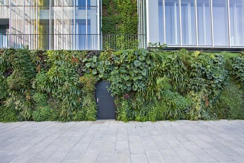 Vertical Garden Design