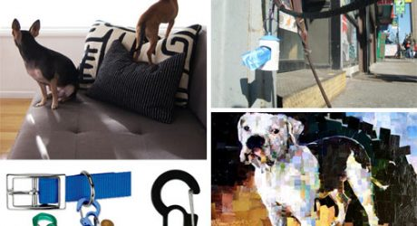 Dog Milk: Best of March 2011