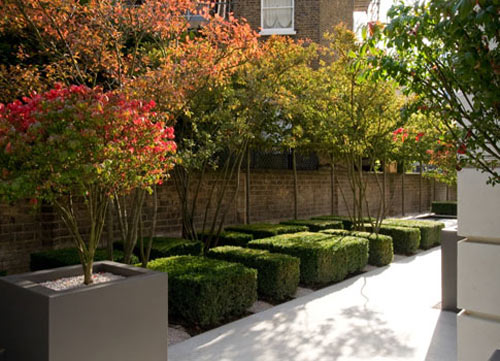 Get Out! Philip Nixon on the Art of Precision Garden Design