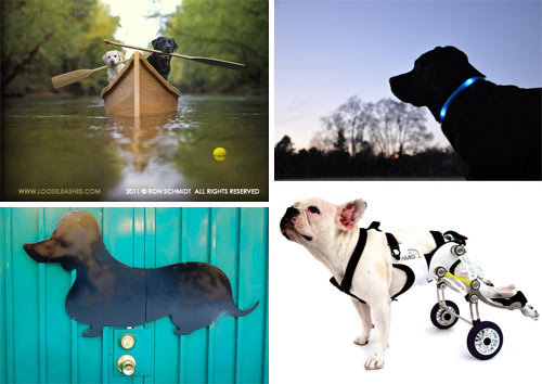 Dog Milk: Best of April 2011