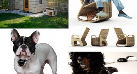 Dog Milk: Best of May 2011