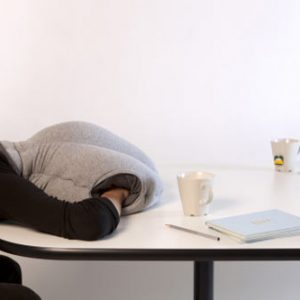Ostrich Nap Pillow