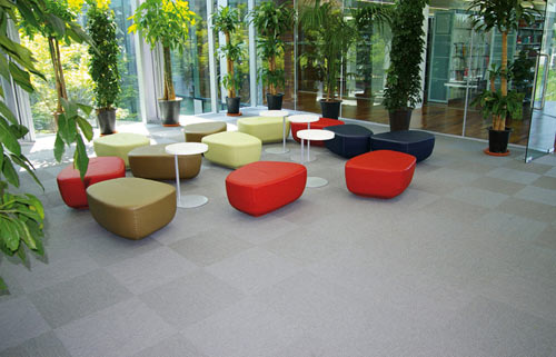 Meet Bolon in main interior design  Category