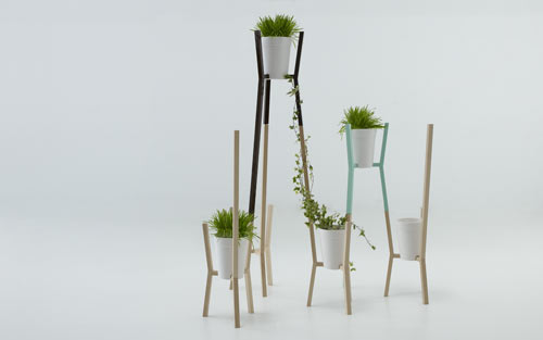 Roots by Mut Design