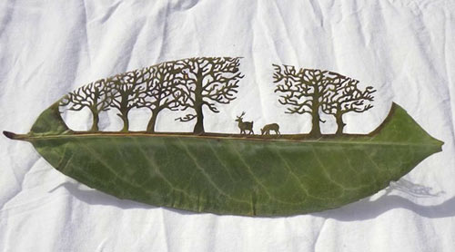 Leaf Cut Art by Lorenzo Durán