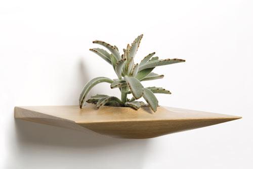plant-pods-4