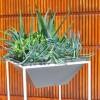 trapa-planters-5