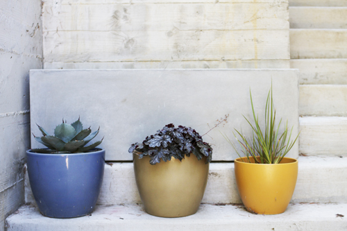 Three-Modern-Pots