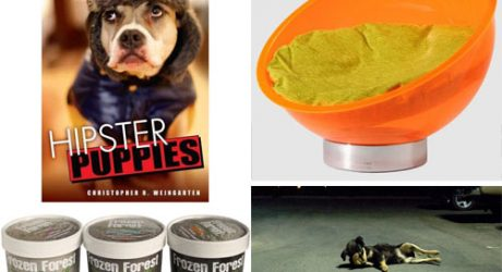 Dog Milk: Best of August 2011