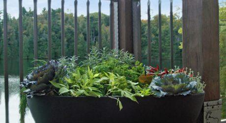 Garden365 by Eserro