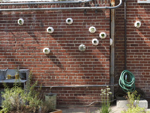 Garden Wall Design Markcastroco
