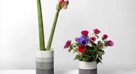 Concrete Vase by Xiral Segard