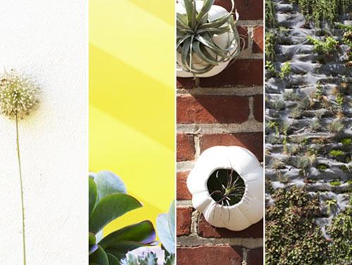 MilkWeed: Blank Slate – Garden Walls