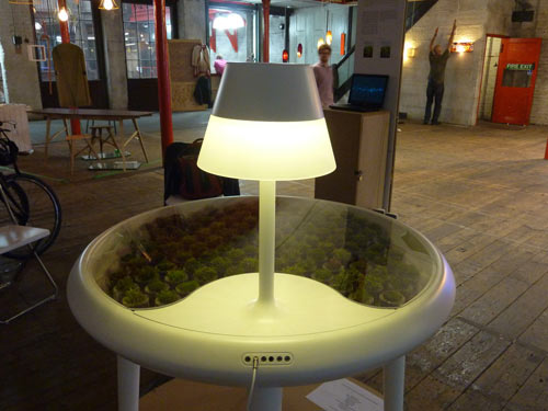 Moss Table in home furnishings  Category