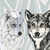 wolf-family-portrait