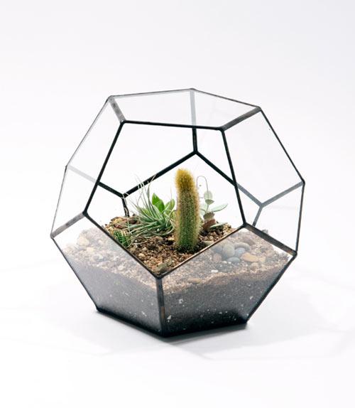 Score+Solder Terrariums