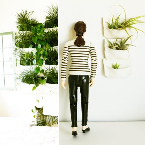 MilkWeed: Greening Your Modern (mini) Home