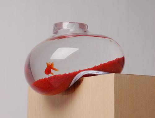 Bubble Fish Tank Makes Me Uncomfortable