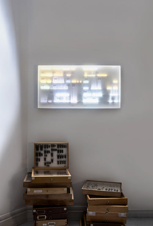Collection of Light by humans since 1982 in main home furnishings art  Category