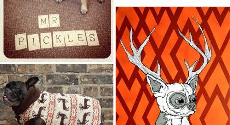 Dog Milk: Best of November 2011