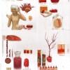 cabinetdecuriosite-autopsiedemarieantoinette